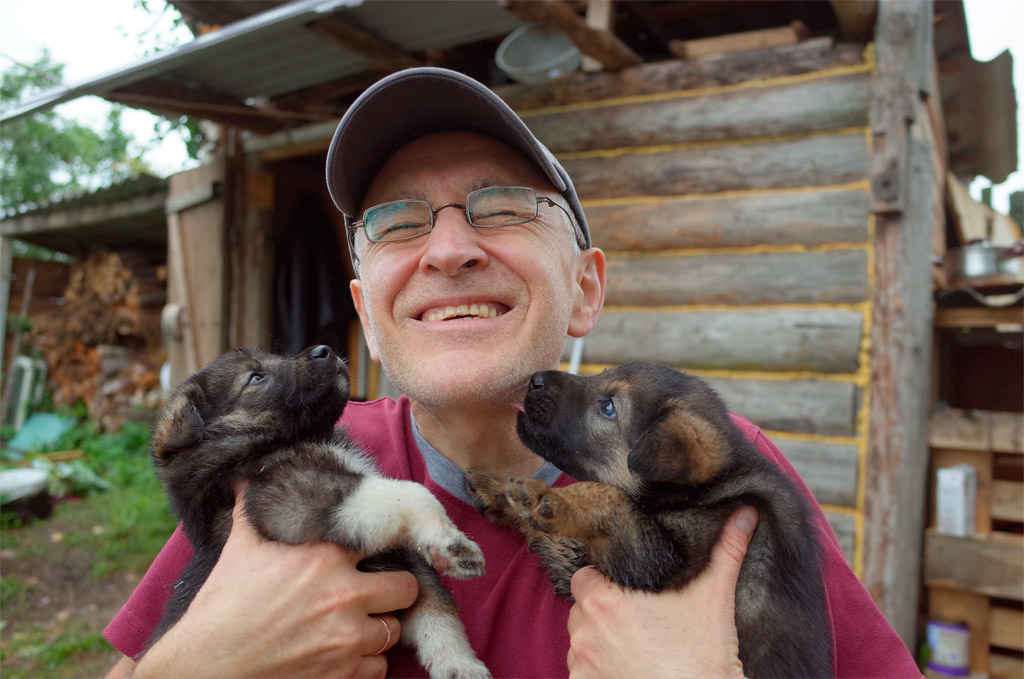 adopting a covid puppy